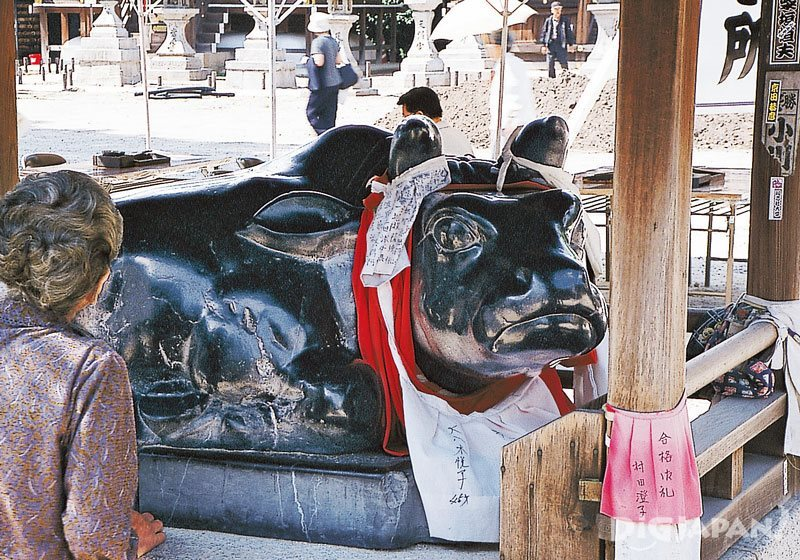Statue of a cow inside Kitano Tenmangu Shrine in Kyoto