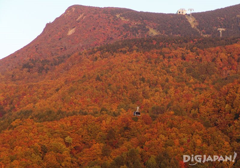 Fall foliage at Mt. Zao in Yamagata Prefecture 2