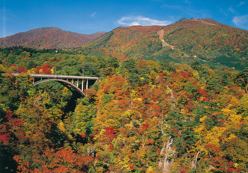 Fall foliage at Naruko Gorge in Miyagi Prefecture 1