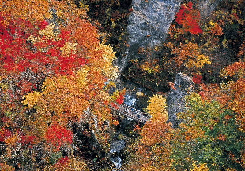 Fall foliage at Naruko Gorge in Miyagi Prefecture 2