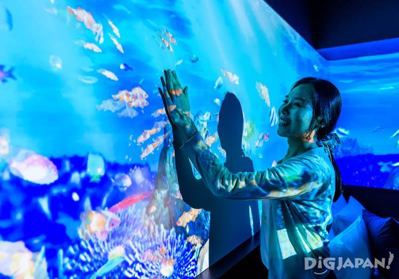 The CG projections inside the Chura-Umi Room at Hotel Gracery Naha include a game in which you can feed fish