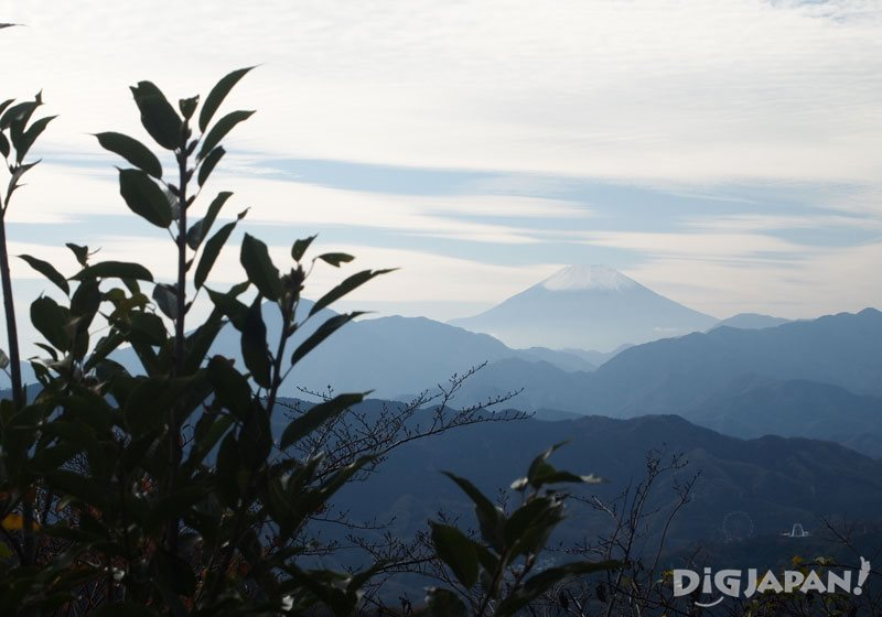 从高尾山可以看到富士山