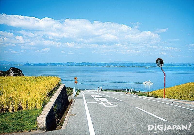 테시마 박물관 근처 언덕