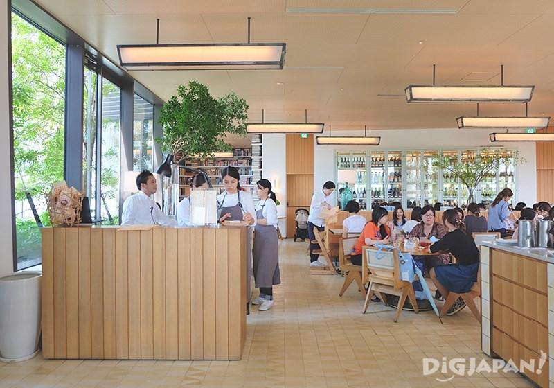 Best 5 Pancake Tokyo_Bills (Omotesando) 1
