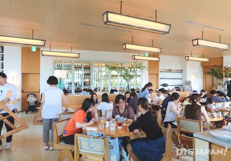 Best 5 Pancake Tokyo_Bills (Omotesando) 2