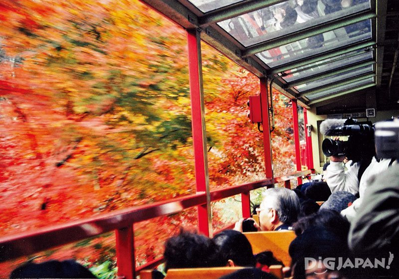Fall foliage in Arashiyama from the Sagano Romantic Train