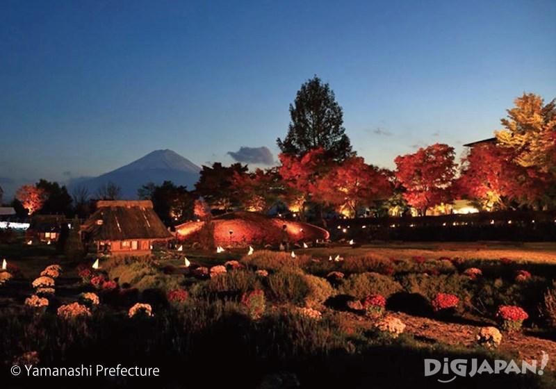 富士河口湖紅葉まつりのもみじ回廊ライトアップ_1
