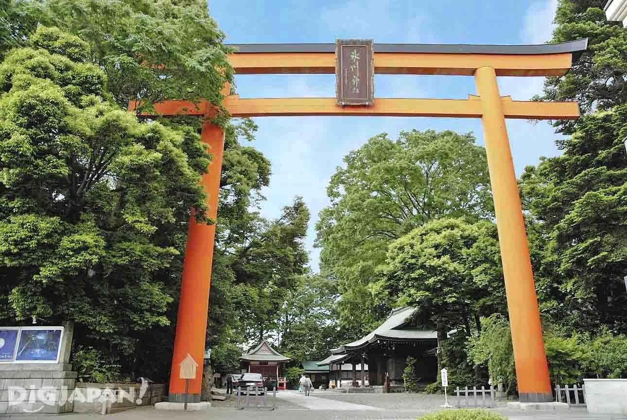 ศาลเจ้าคาวาโกเอะ ฮิคาวะ จินจะ (Kawagoe Hikawa Jinja Shrine)