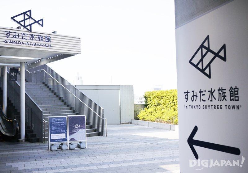 墨田水族館入口處手扶梯