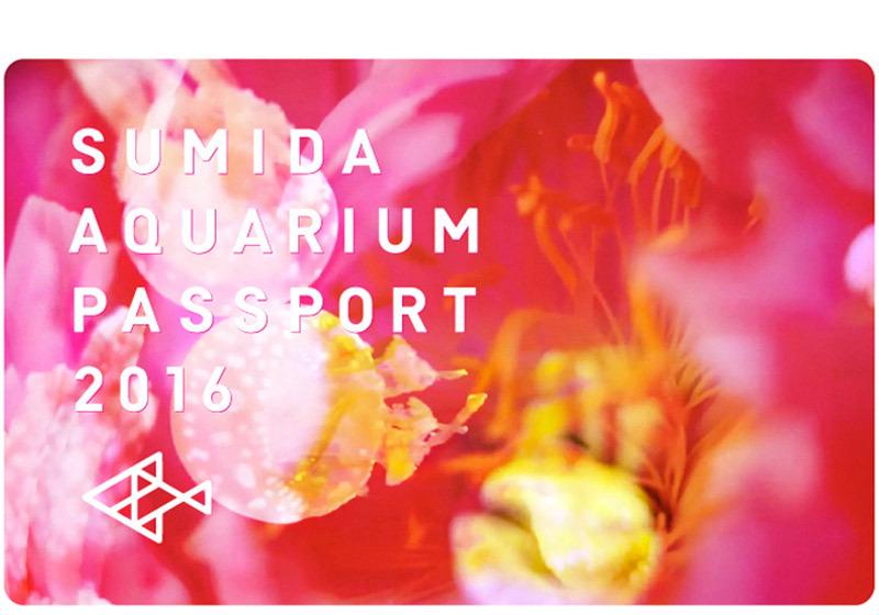 期間限定蜷川氏デザインの年間パスポート