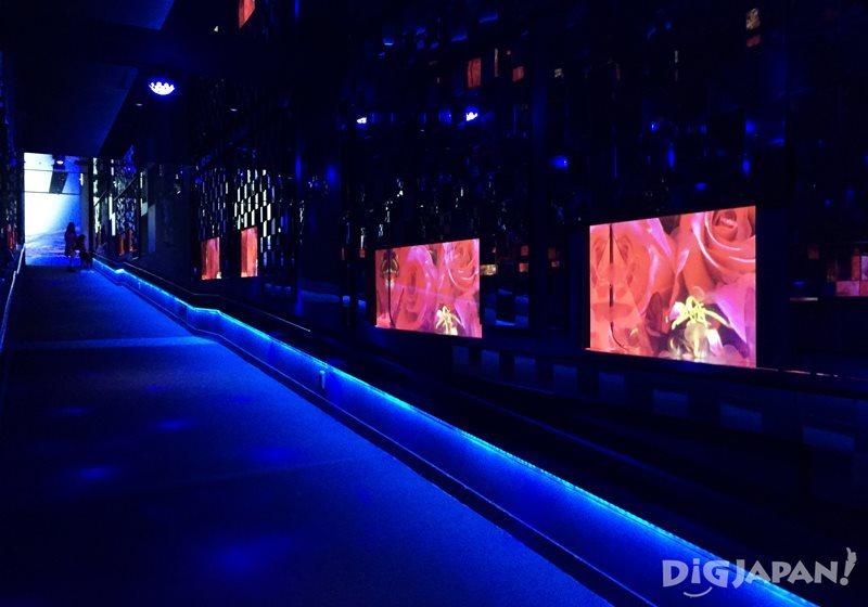 約5,000枚の鏡で囲まれたクラゲ万華鏡トンネル2