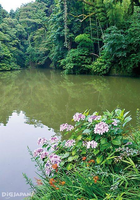 The lake near  Kumataka-sha inside Fushimi Inari Taisha Shrine