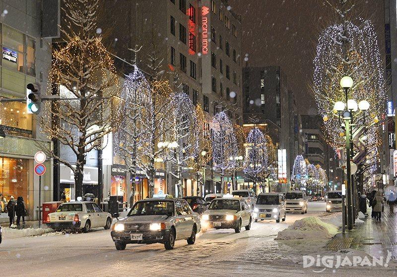 札幌白色灯树2