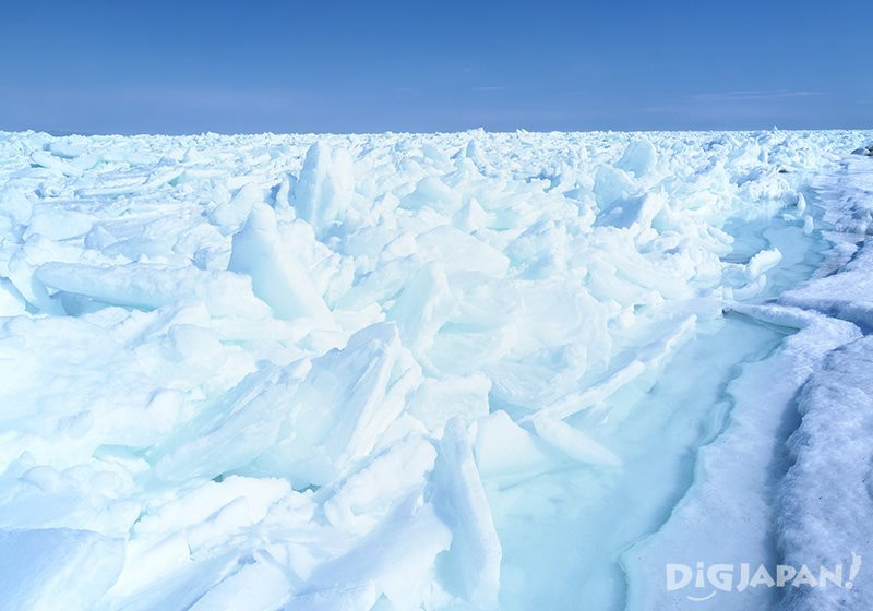 The best time to see drift ice in Hokkaido is between February and March