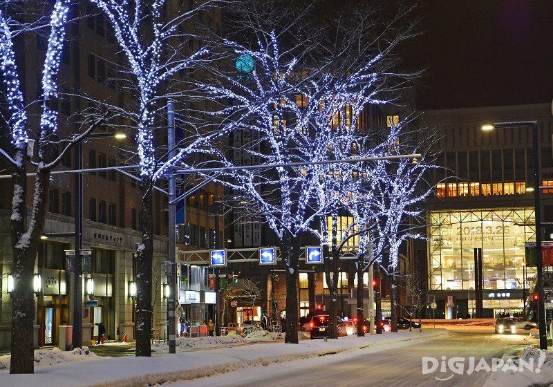 札幌白色灯树3