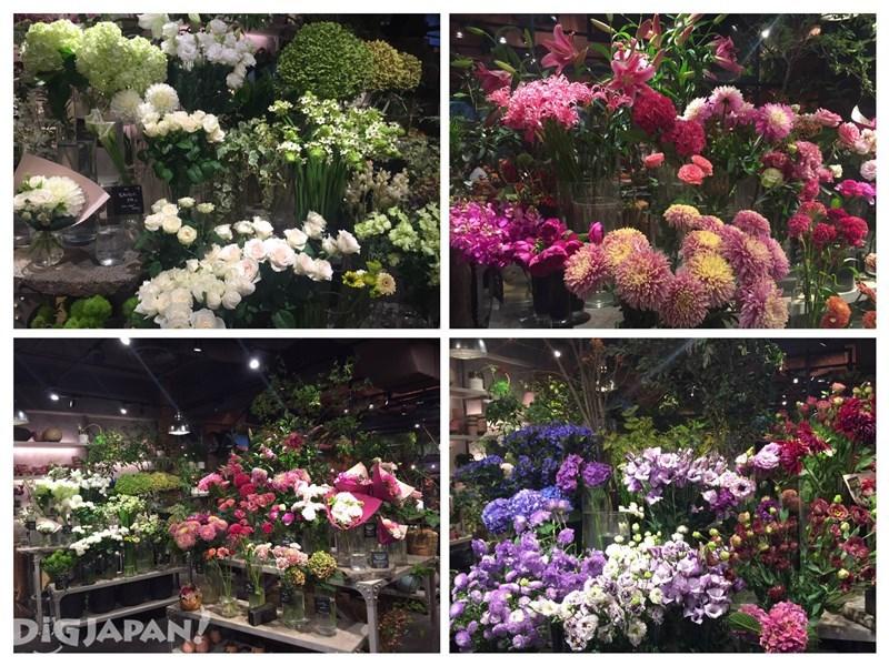 Aoyama Flower MarketTea House_1