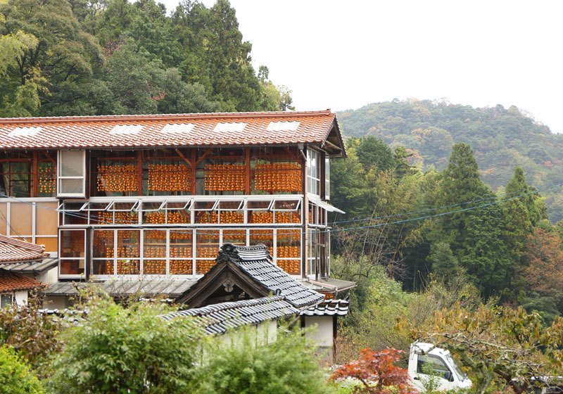 Wooden structures in which persimmons are dried