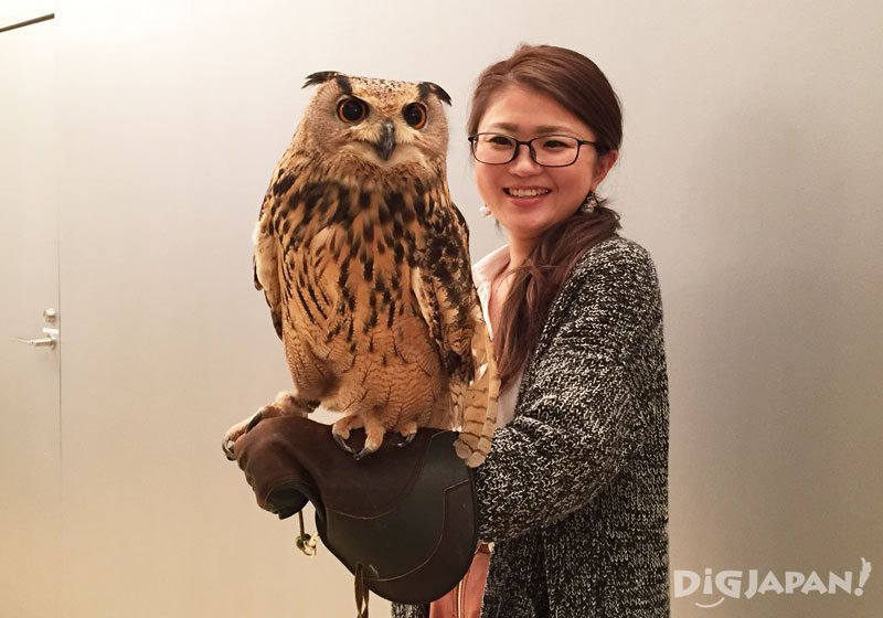 Have your photo taken with an owl