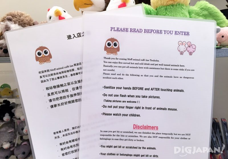 Moff animal cafe_ Brochures in English and Chinese