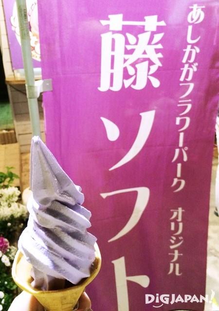 Ashikaga Flower Park4
