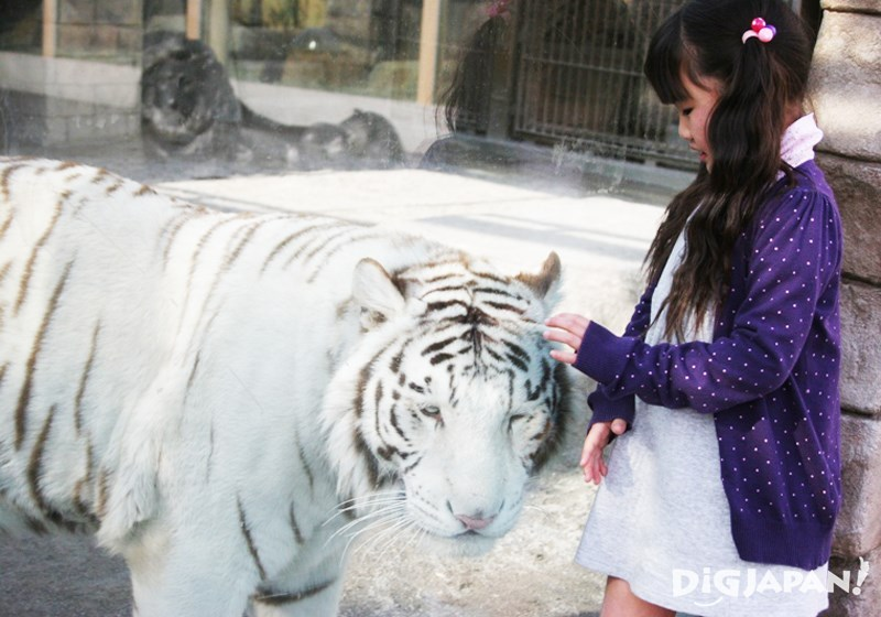 Tobu Zoo1