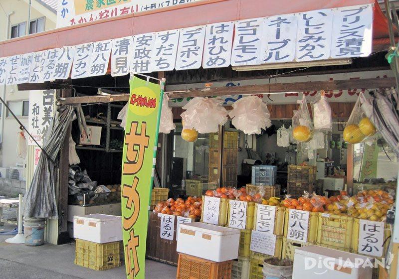 柑橘類水果店
