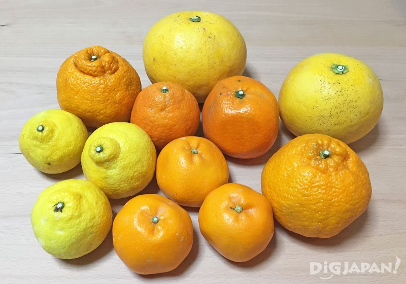 Ikuchi-jima Citrus Fruits