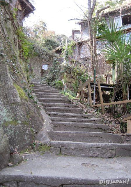 cat path