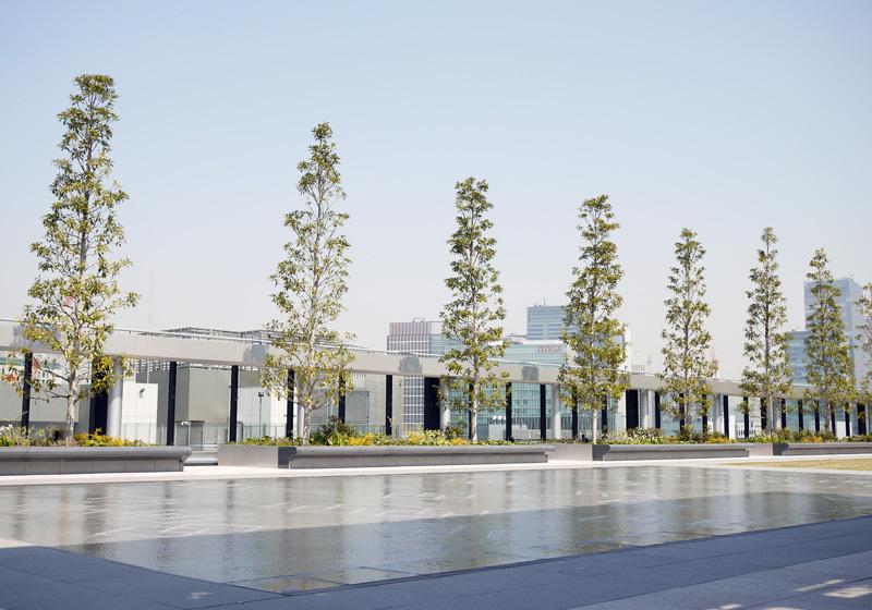 繁華商業街銀座最大一片綠洲