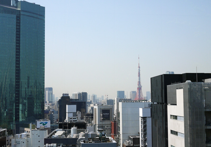 从屋顶庭院可以眺望到东京塔