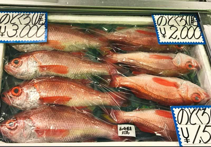 ปลา NODOGURO