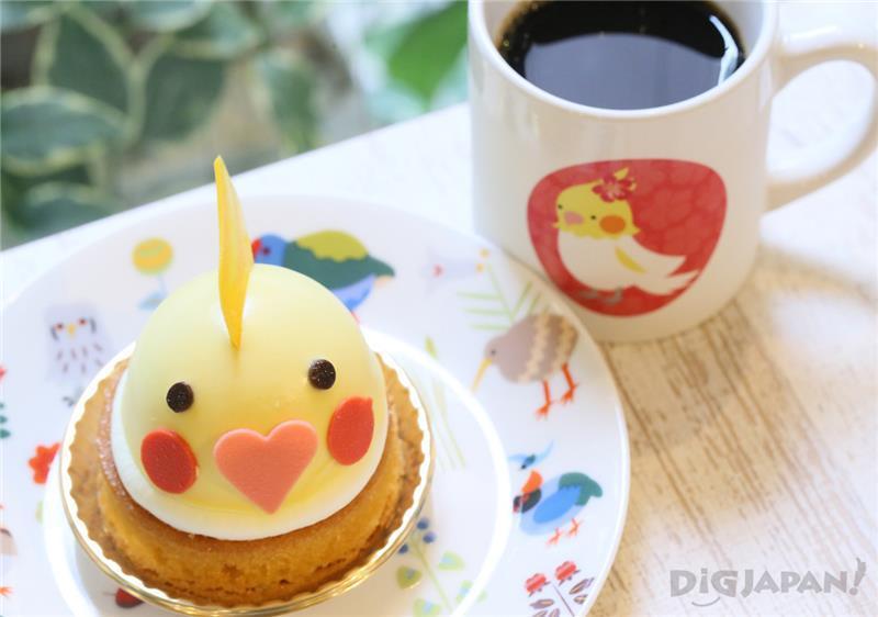鸚鵡蛋糕&飲料