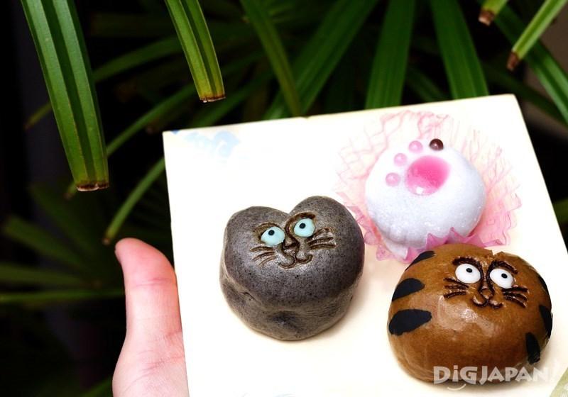 Left: Russian Blue cat black sesame manju 185 yen. Center: cat paw wagashi 240 yen. Right: Tabby cat brown sugar manju 185 yen