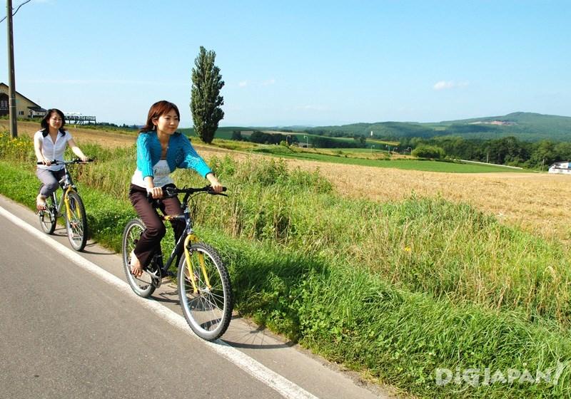 自転車で自由に美瑛を廻ろう