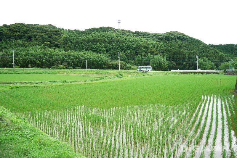 糸島の田園風景