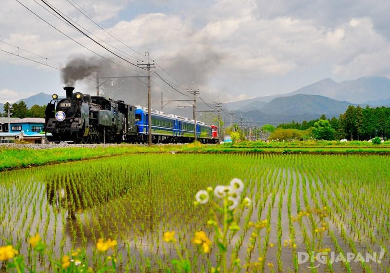 SL Taiju