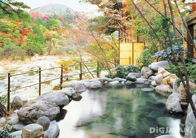 Hananoyado Matsuya (花の宿 松や)