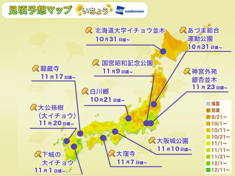 日本全国の紅葉:いちょうの名所別見頃予想