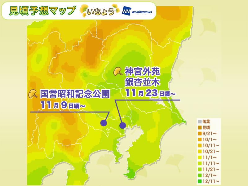 紅葉人気エリア:関東の見頃予想(いちょう)