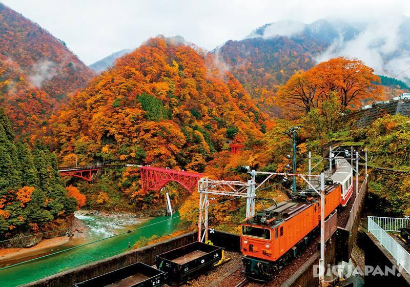 黒部峡谷鐵道沿線(富山縣)