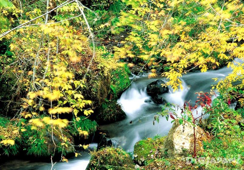 Kyusuikei Gorge (Oita Prefecture)