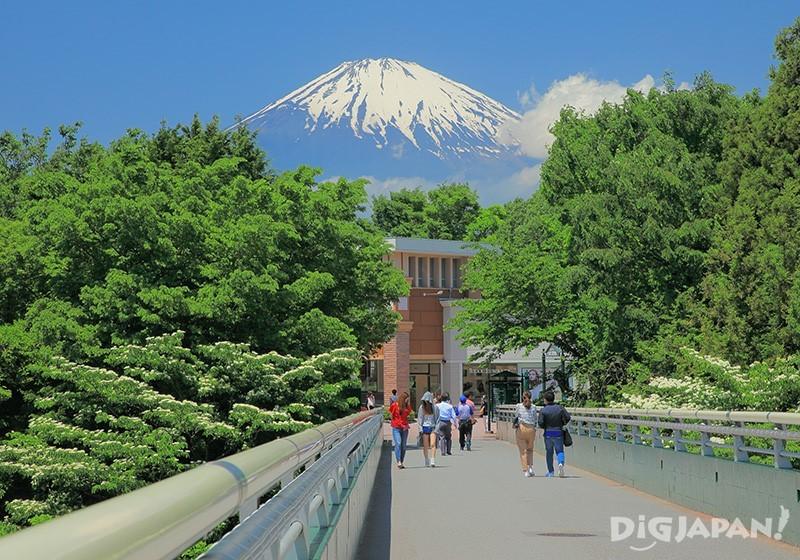 「夢の大橋」付近は富士山の絶景撮影スポット