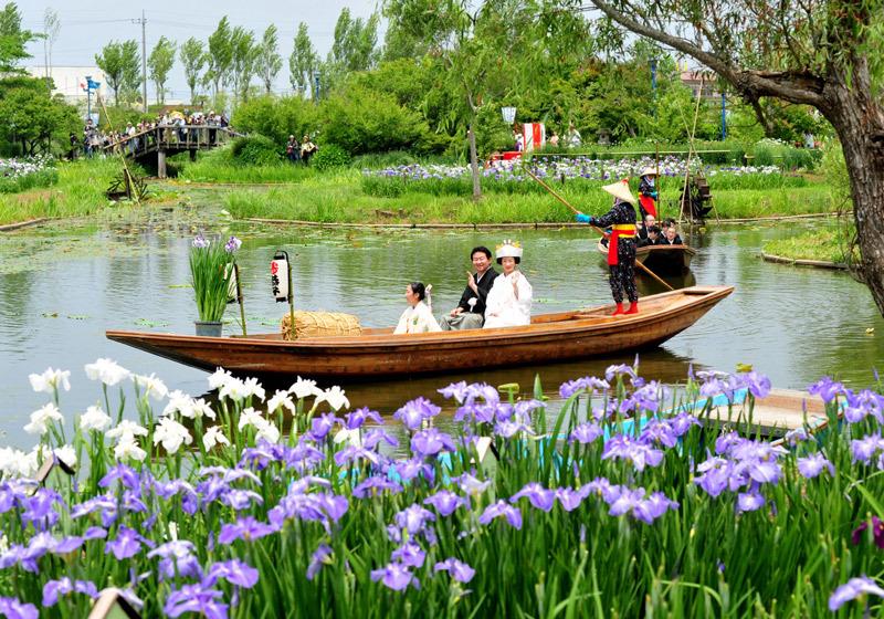 Wedding Boats at the Suigo Sawara Ayame Festival