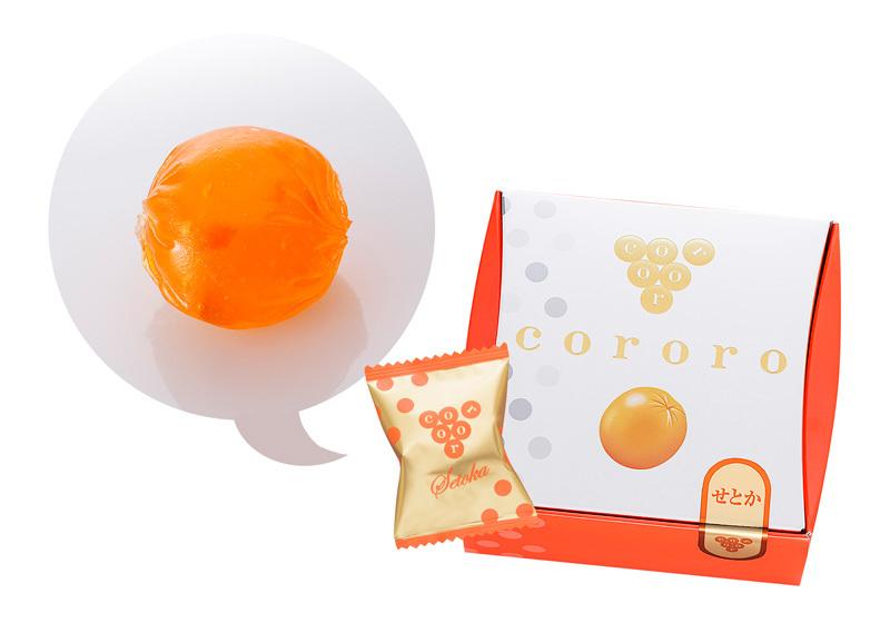 SETOKA甜橙【秋冬限定】