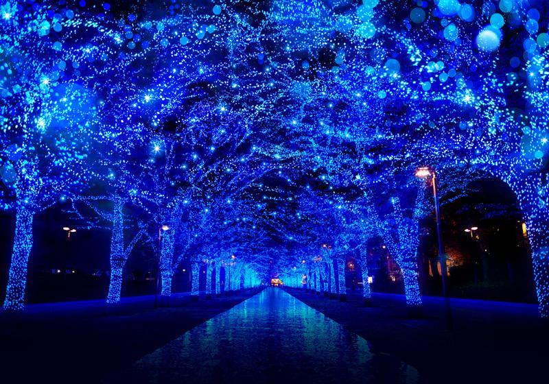 ชิบูย่า 「Blue Grotto SHIBUYA」