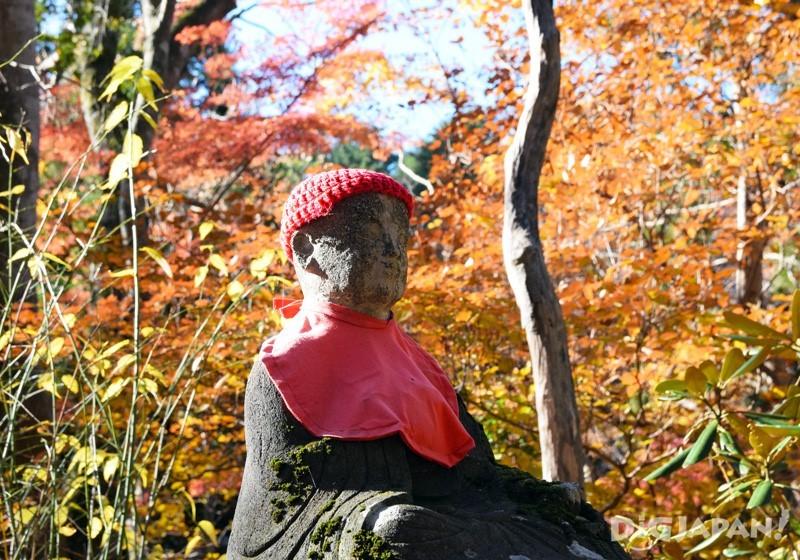 พระพุทธรูปและรูปปั้นเทพเจ้าต่างๆ บรรยากาศโดยรอบแสนสงบ สวยงามโอบล้อมไปด้วยใบไม้แดง2