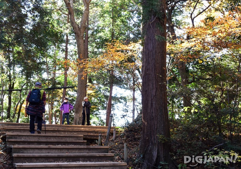 Hiking on Mount Takao