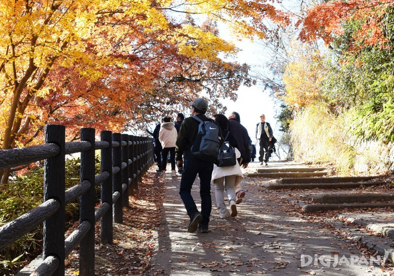 Enjoying autumn leaves on Mount Takao