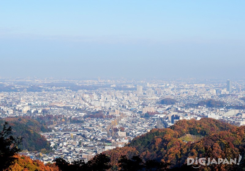 View from Mount Takao's observation deck