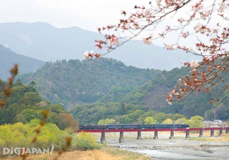 大井川第一橋梁とSL
